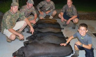 Big hog night 2