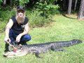 2012 Alligator Carlsontravis