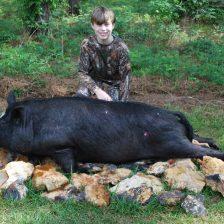 2016 Night Hog Harvest 001