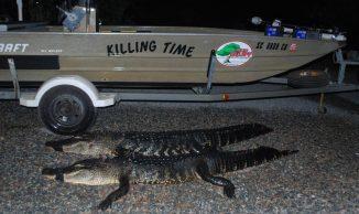 Opening night alligator 2011